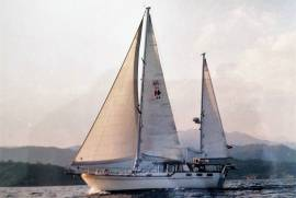 Nauticat, 44