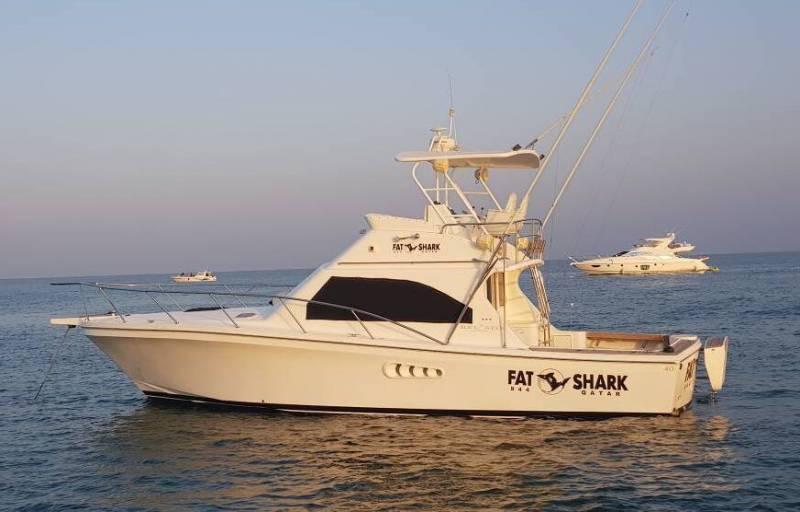 Yachts for Sale : Black Watch, Flybridge